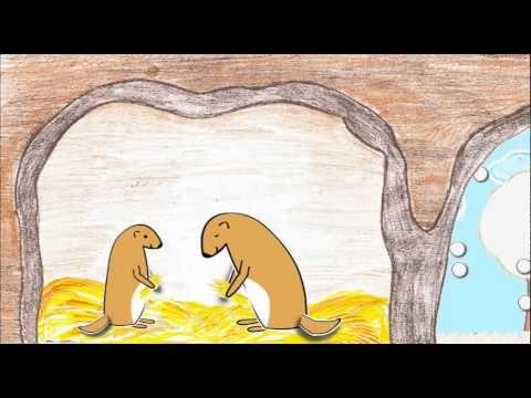 Pourquoi les animaux hibernent-ils ? - YouTube