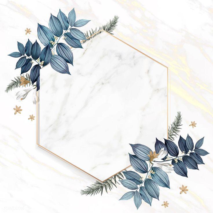 Download premium illustration of Hexagon foliage frame on white marble