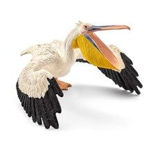 The long, large beak is the pelican's most striking feature. When hunting fish, they use it like a large soup spoon. They scoop up a large amount of water together with the fish, and then press the water out again. This leaves just the fish behind. The Great White Pelican has a distinctive pink ring around the eyes and pink-coloured legs. The Australian pelican has the longest beak at 49 centimetres. The Dalmatian pelican is the largest. Despite its weight of 12 kilograms, it is very…