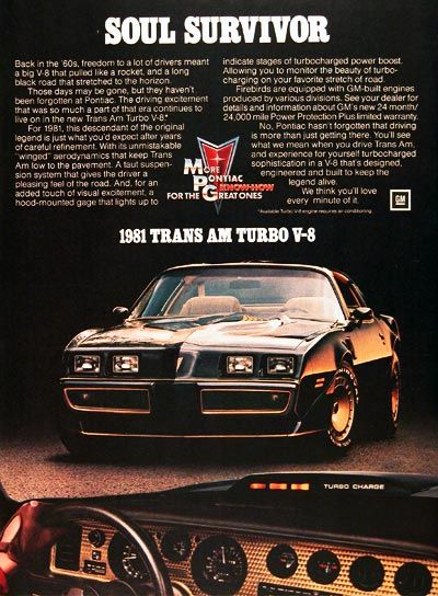 1981 Pontiac Trans AM - They sure don't make 'em like they used too!