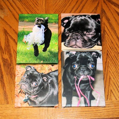 Photo Canvas Wall Hanging: How to Put Your Photo on Artist Canvas