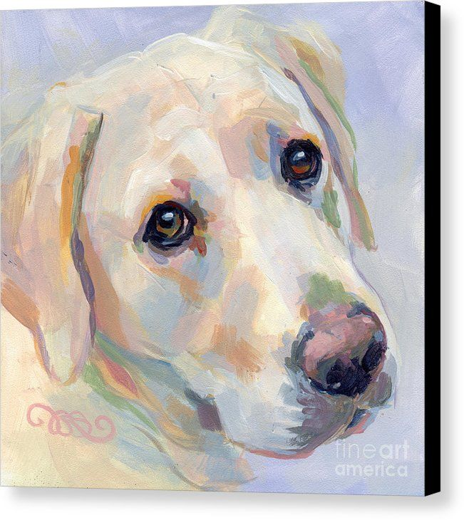 Yellow Lab Canvas Print featuring the painting Young Man by Kimberly Santini