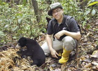 30pc decline in sun bear due to habitat loss and poaching | Daily Express Newspaper Online, Sabah, Malaysia. http://www.dailyexpress.com.my/news.cfm?NewsID=85417