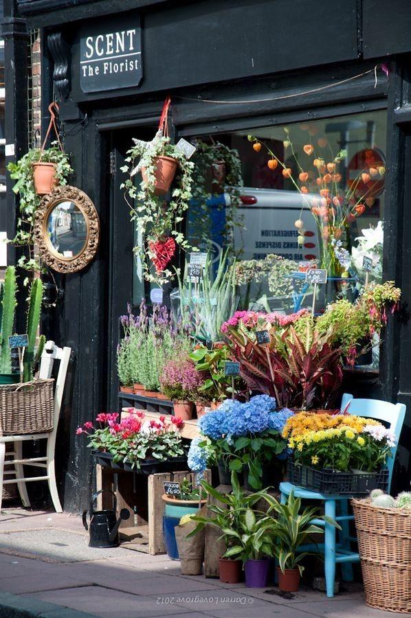 SCENT the florist 269 best Flower shops
