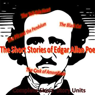 essay themes for poe