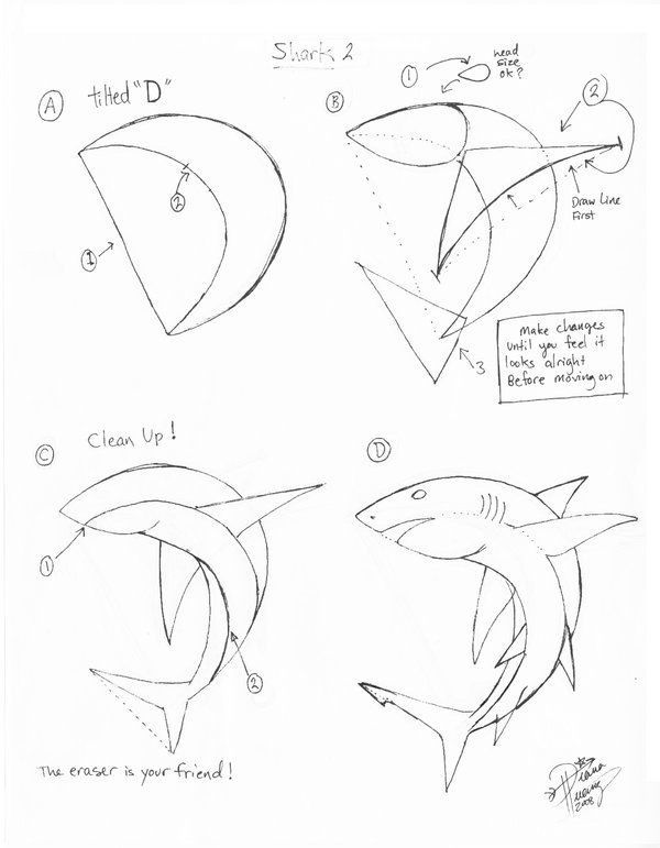 How to draw a shark. Sweet!