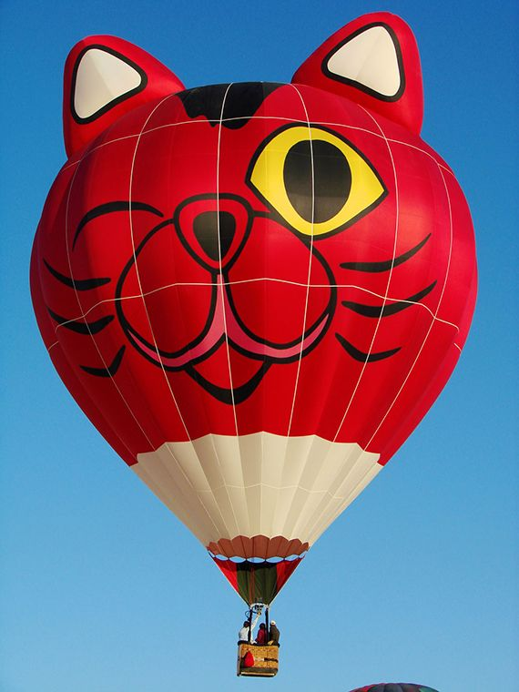 13 best images about cat balloons on pinterest heart for Air balloon games