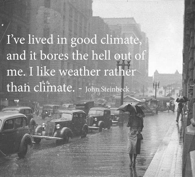 "Weather, Rain, Seattle ""I Like Weather"