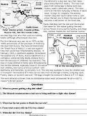 Printables Stone Fox Worksheets 1000 images about stone fox on pinterest sled dogs and foxes iditarod dog race enchantedlearning com