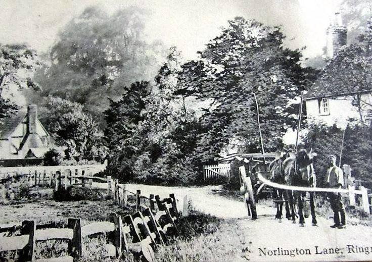 Norlington Lane Ringmer.
