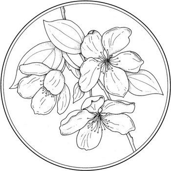 Circle With Flower Coloring Page From Flowers Category Select 25565 Printable Crafts Of Cartoons Nature Animals Bible And Many More