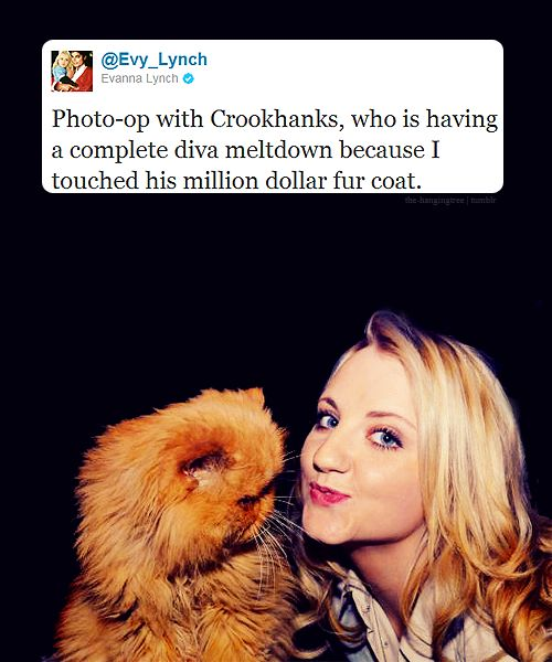 I don't think I've properly expressed how much I love Evanna Lynch.
