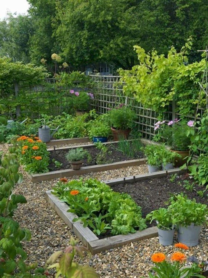 45 Affordable Diy Design Ideas For A Vegetable Garden My Desired Home Garden Layout Vegetable Large Backyard Landscaping Backyard Vegetable Gardens