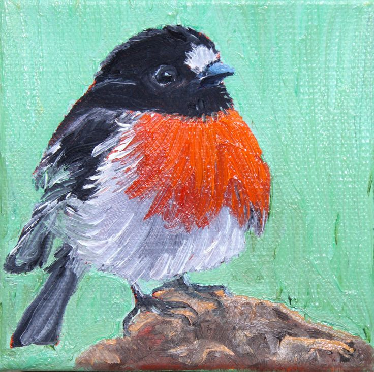 "BIRD PAINTING, ORIGINAL painting, 4""x 4"" painting, red capped robin, red robin,oil painting, bird art, small painting, square painting, by GrazynaWolski on Etsy"