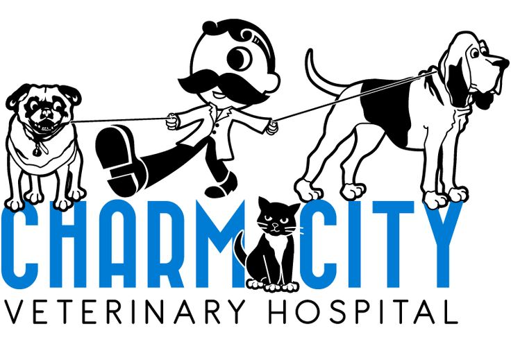 to Charm City Veterinary Hospital! We are a small