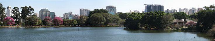 Com um vizinho assim, dá até gosto de ir ... - Parque do Ibirapuera - São Paulo - SP