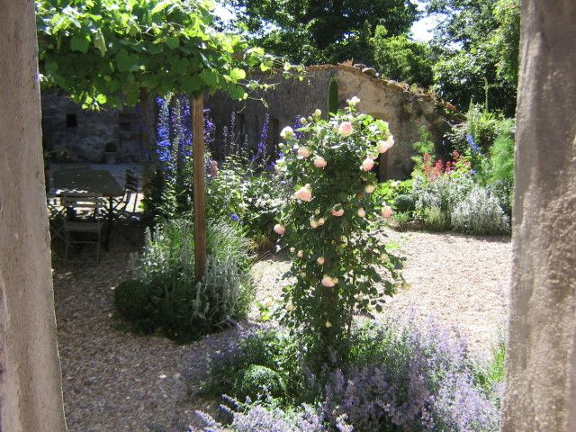 Low Water Garden Design low water gardening yields lovely results Low Water Garden Google Search