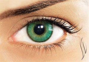 WrLens. WrLens.com - Solotica Contact Lenses, Natural Colors Contact Lenses, Hidrocharme Contact Lenses, Hidrocor Contact Lenses, Hidrocor Ice Contact Lenses, Hidrosummer Contact Lenses, Toric Contact Lenses