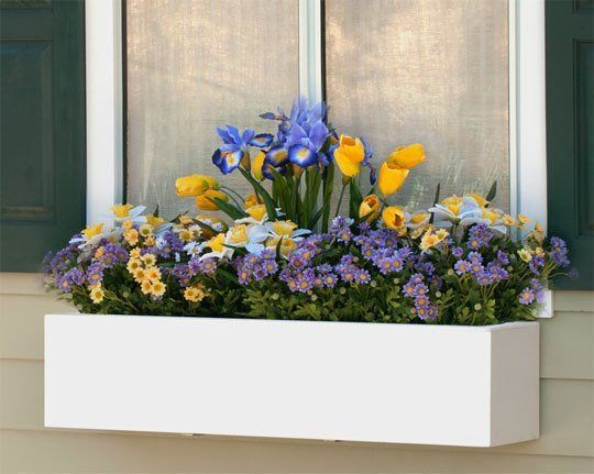 Window Boxes: The Ultimate Small Space Garden