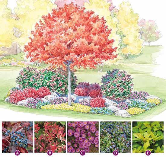 Beautiful autumn flower garden scheme