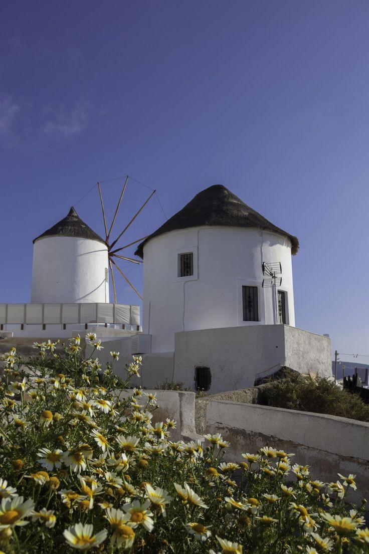 Oia windmills - tradewinds travel photography– tradewinds travel photography
