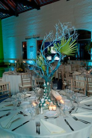 """Under The Sea"" themed centerpiece at the Maritime Aquarium in Norwalk, Connecticut, presented by Philip Stone Caterers."