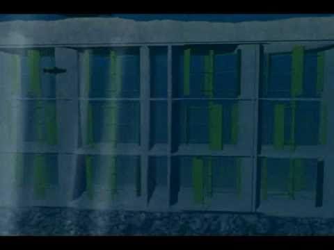 Energía Mareomotriz - Blue Energy - Canal de Chacao.