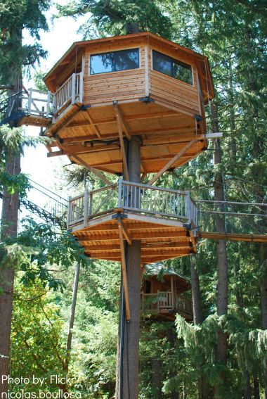 Camping without a tent: 4 Alternatives to Camping. I so want to stay in a treehouse!