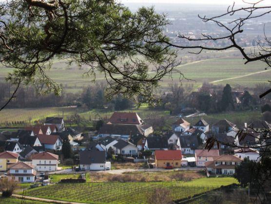 Königsbach och Mussbach i bakgrund © Lars O Larsson