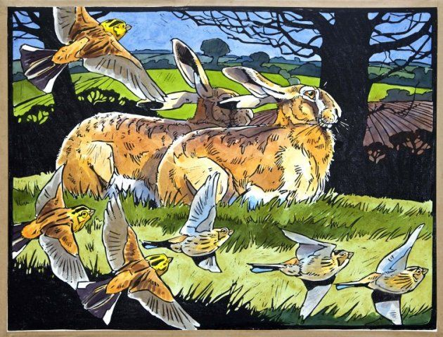 Hares And Yellowhammers