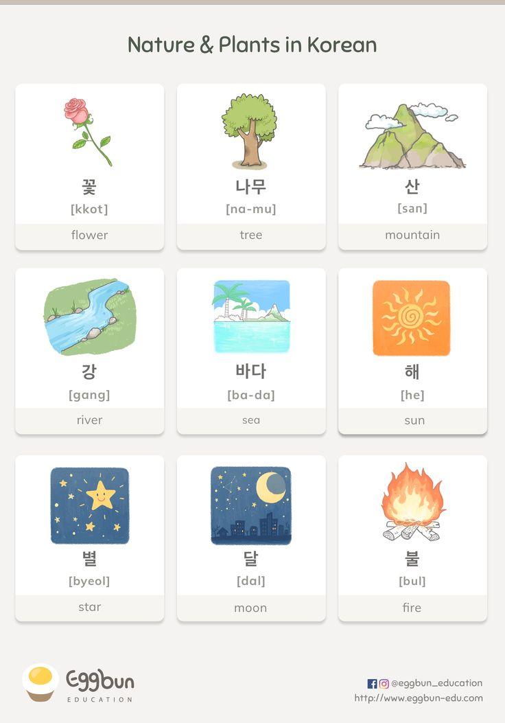 Nature & Plants in Korean