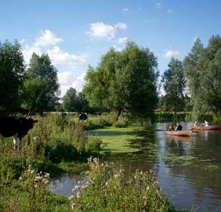Dedham Vale. Essex countryside.