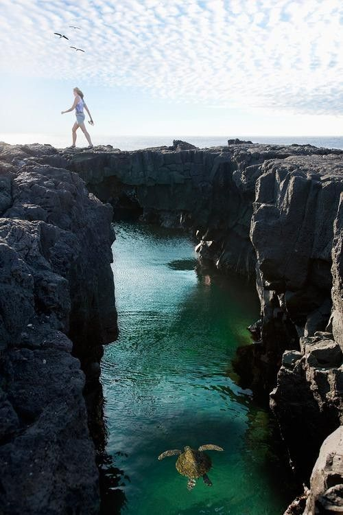 #AdventureTravel: Finding the Real Galapagos(Photo: Getty Images)