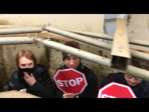 269Life Liberation Animale - Slaughterhouse assault - DIRECT ACTION