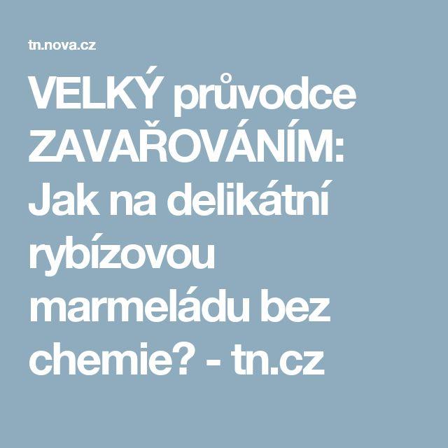 VELKÝ průvodce ZAVAŘOVÁNÍM: Jak na delikátní rybízovou marmeládu bez chemie? - tn.cz