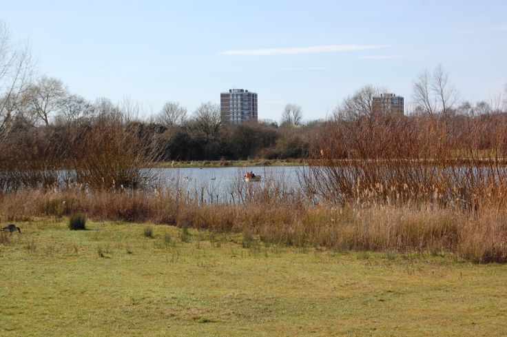 The lake at Hainault Forest Country Park