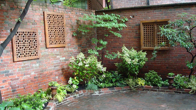 39 Best Garden Portfolio Wisteria Amp Rose Images On