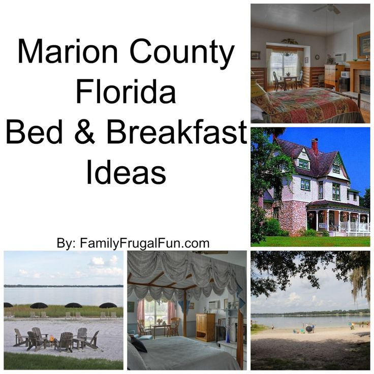 Enjoy the best Bed & Breakfasts you an find in Marion County Florida! #ad Reasonably priced, fun times!  #OcalaMarion                              * Twitter Handle: @ocalamarion                       https://www.facebook.com/ocalamarion/