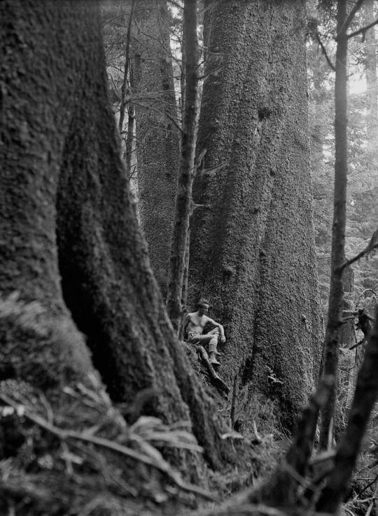 1931 John Yeon and a Stika Spruce, Seaside, Oregon. Photo by Donald Lawrence