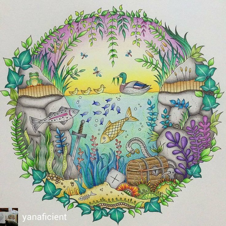 The Duck Pond Book Enchanted Forest By Johanna Basford Medium Faber Castell Polychromos Coloured Pencils