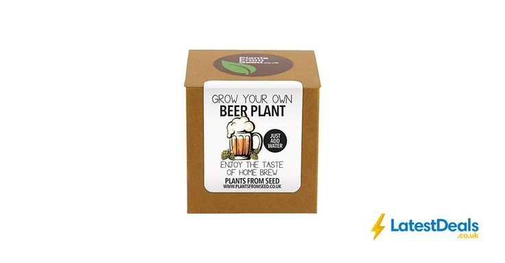 Plants from Seed Grow Your Own Beer Plant Kit, £9.32 at Amazon UK