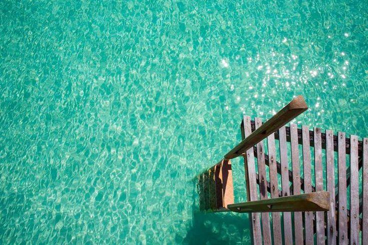 FLIPP Management | Jem Cresswell, underwater photographer