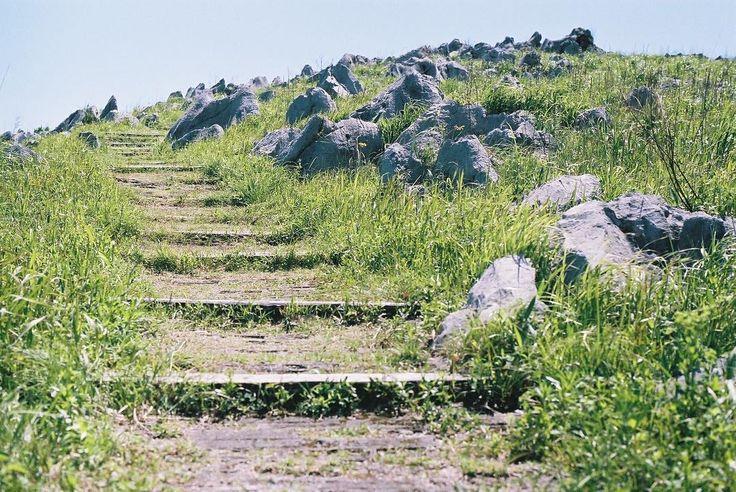 Hiking #nikon #nikonf2 #nikonf2photomic #35mm #filmphotography #filmcamera #fujifilm #50mmlens #hiking  #秋吉台 #カルスト台地 #美祢市 by peace_maker1989