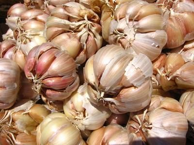Benefits of Garlic Pills-Lowering cholesterol, treating and preventing colds, treating high blood pressure, preventing heart attacks, and treating ulcers.