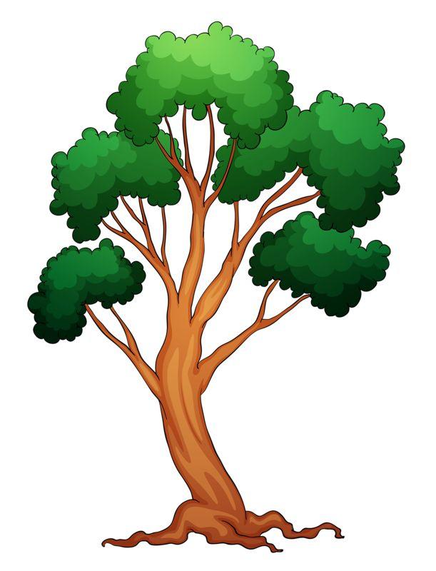 196 best Tree ต้นไม้ images on Pinterest | Clip art ...