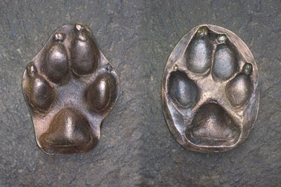 "Pets-Paws...A Pet-Paw is a beautiful metal ""paw"" cast directly from your pet's paw print impression. Paws last forever and keep the memory of your pet alive always. It is comforting to hold your Pet-Paw and feel the paw pads in your hand. It's like holding your pet's paw again.Paw Pads, Metals Paw, Memories Of Your Pets, Pets Alive, Pets Paws A Pets Paw, Paw Prints, Pets Paw A Pets Paw"