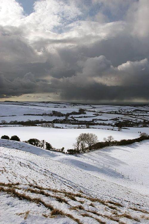 Snow on Eggardon Hill, Dorset, England (by Mike-DT6)