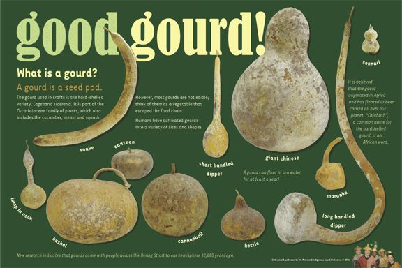 41 best images about gourds on pinterest gourd crafts for Different types of birdhouses