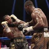Here is a recap of the January 17, 2015 WBC heavyweight title fight between Deontay Wilder and Bermane Stiverne. http://www.potshotboxing.com/?p=4773
