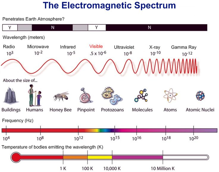 The electromagnetic spectrum #science #infographic